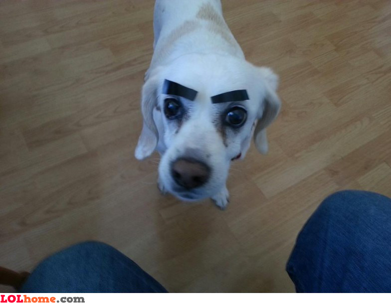Eyebrows for me
