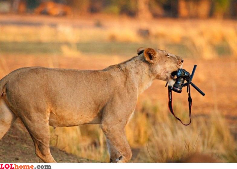 It's my camera now