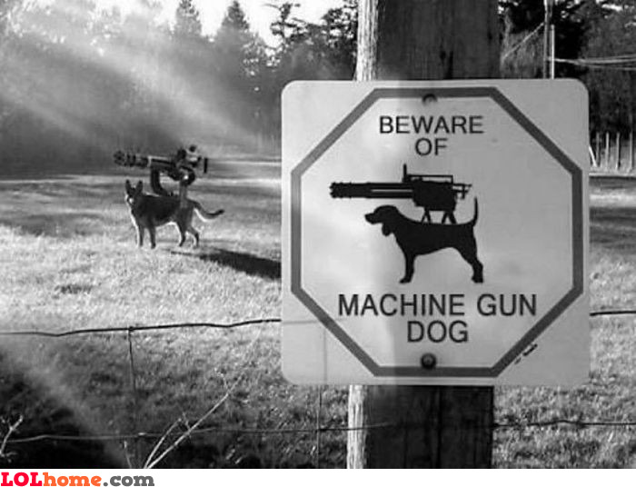 Machine gun dog