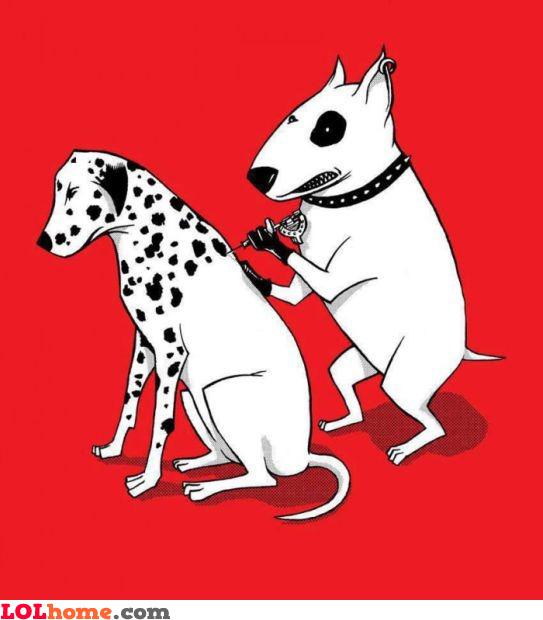 Dalmatian manufacture