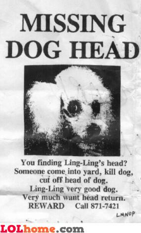 Missing dog head