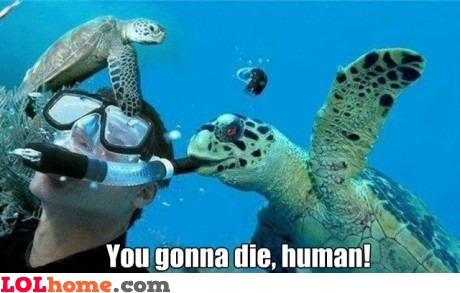 You gonna die