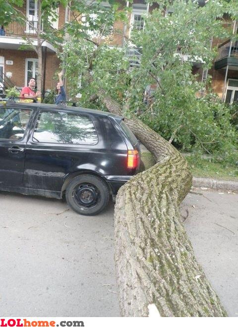 Lucky parking
