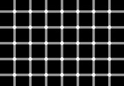 Count the black dots