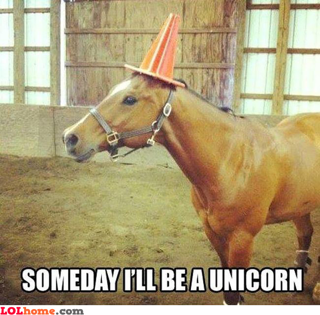 I'll be a unicorn