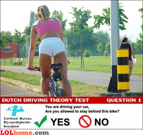Dutch Driving Theory Test