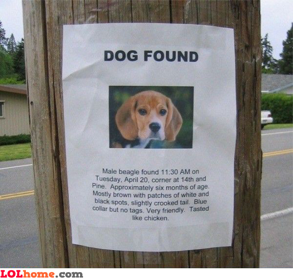 Dog found, tasted like chicken