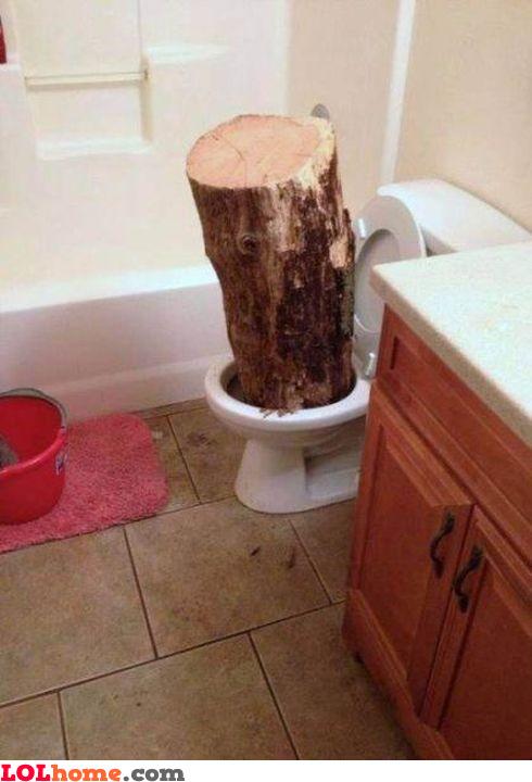 Flushing logs
