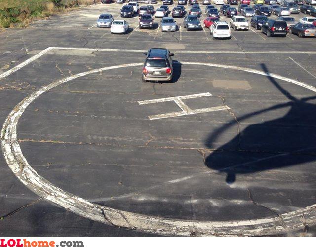 Stupid parking winner