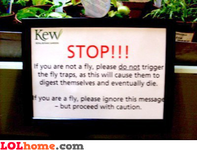 Fly warnings