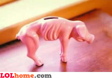 Fat piggy bank