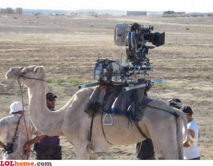 GoPro camel