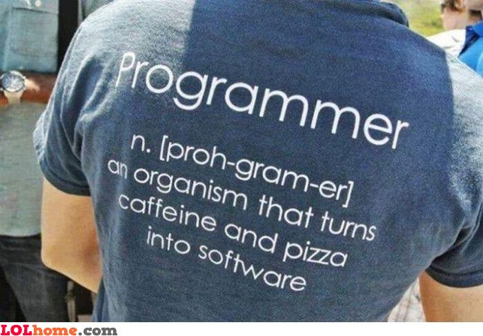 Programmer definition