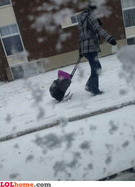 Winter luggage