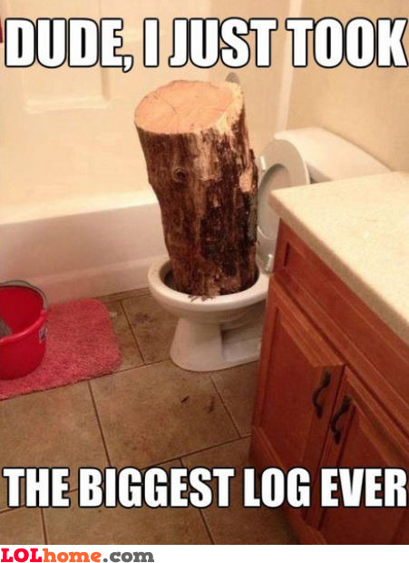 Biggest log ever