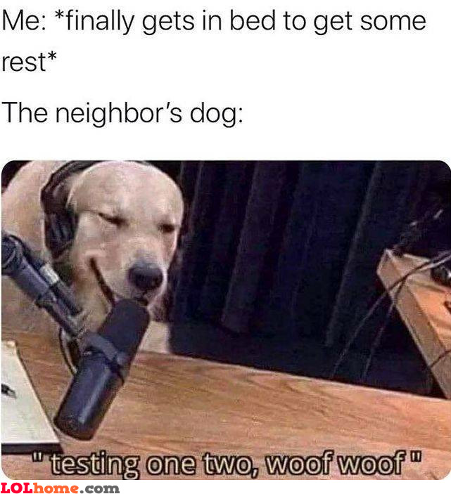 Scumbag neighbor's dog