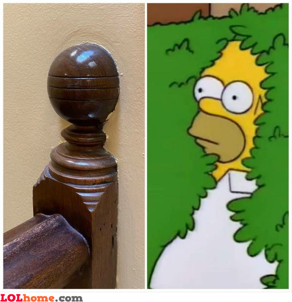 Homer disappearing