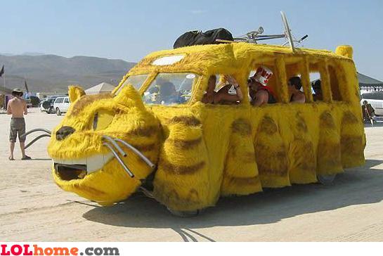 Meaw meaw car