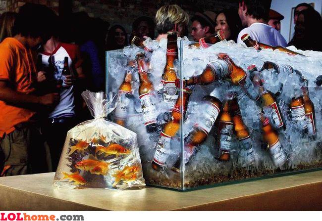 Where should we put those beer bottles?
