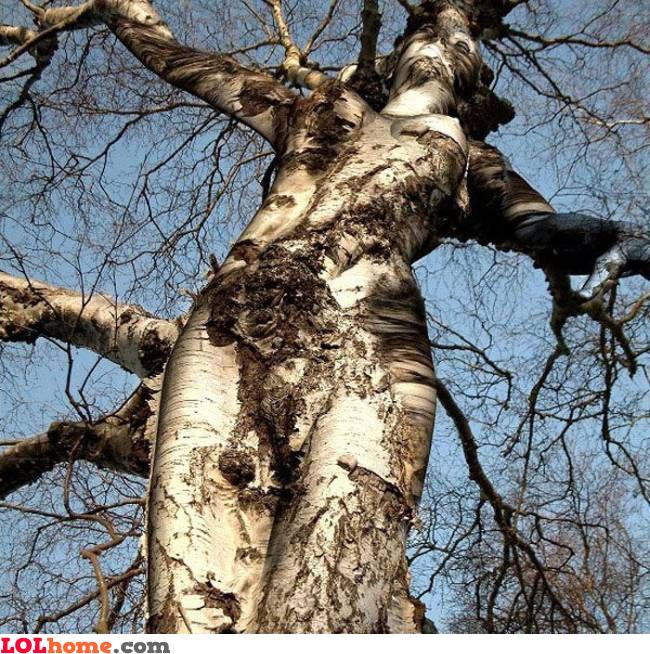 Sexy Nature