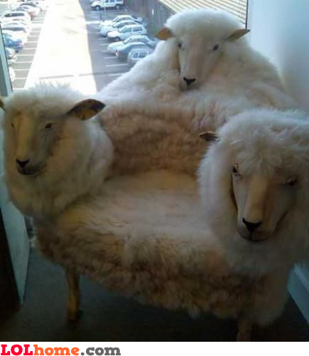 Sheep throne