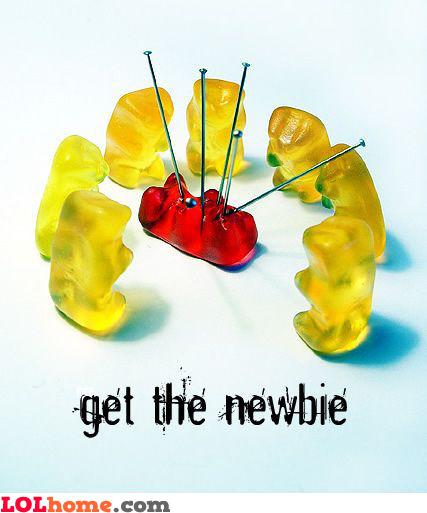 Get the newbie