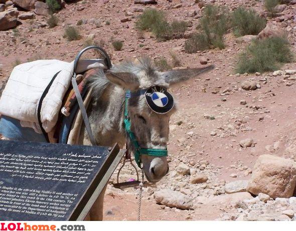 BMW with 1 donkey power