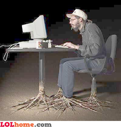 Computer roots