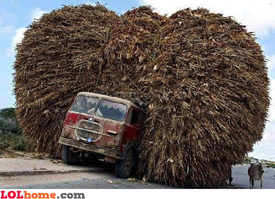 fully loaded truck