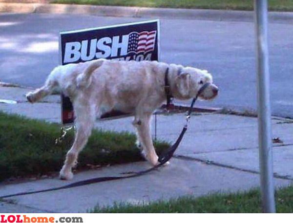 Pee on Bush