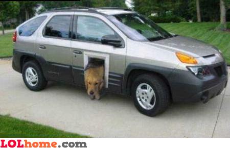 Pet door for your car