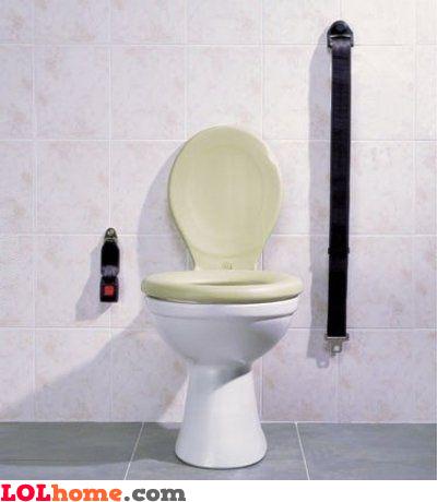 Toilet seat belt