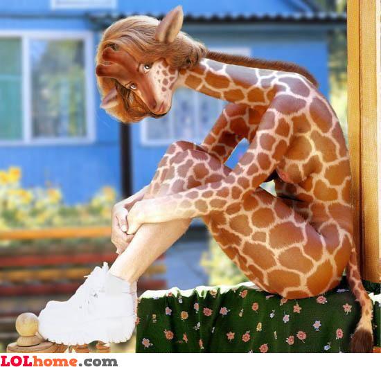 Sexy giraffe