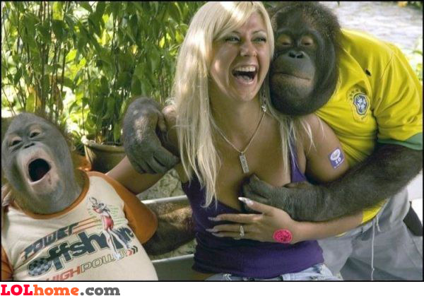 Monkey grabbing breasts