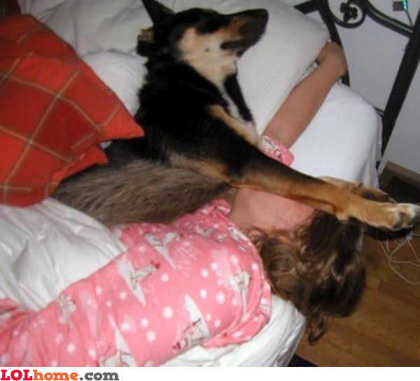 عکس سگ با مزه و جالب