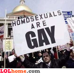 Homosexuals are gay
