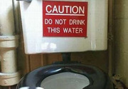 Don't drink from the toilet