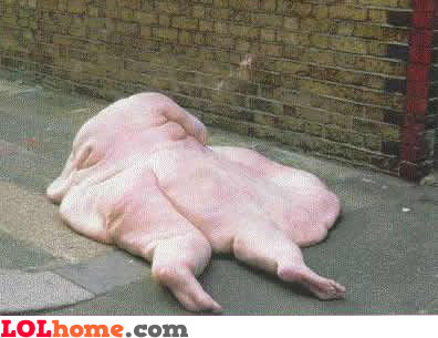 Why fat people should not bungee jump
