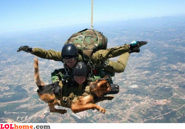 Skydiving with your best friend