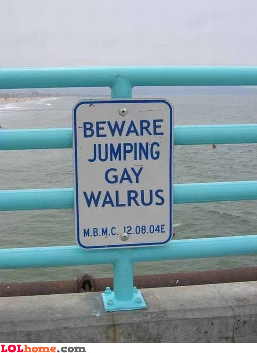 Jumping gay walrus