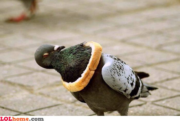 Bread necklace