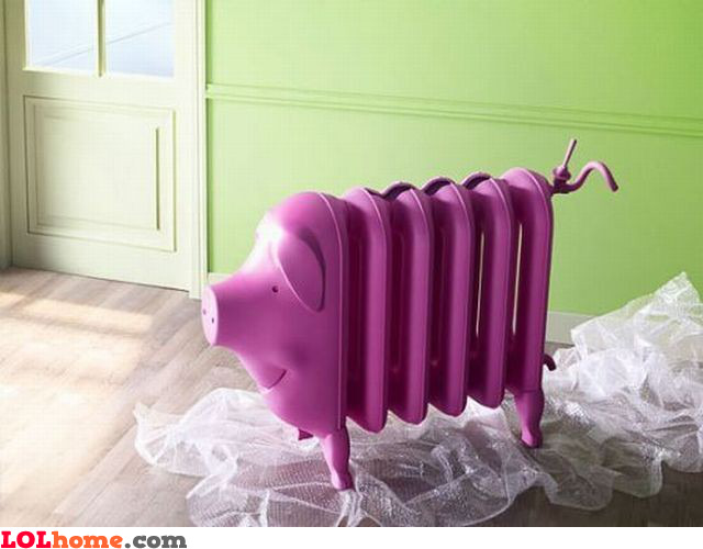 Pig radiator
