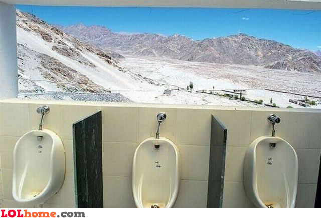 Awesome toilet view