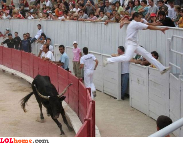 Scared of the bull