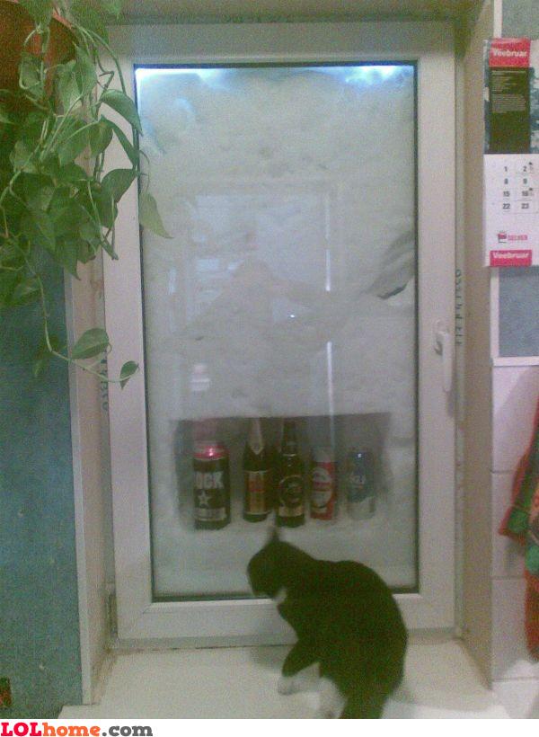 Natural fridge