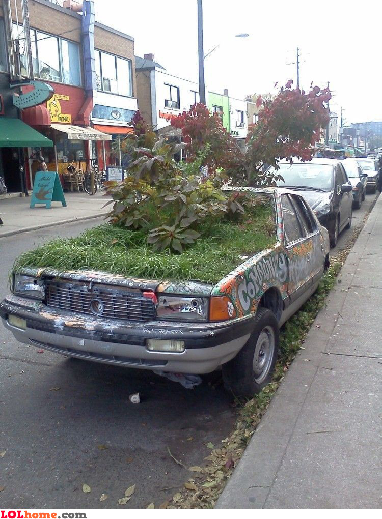 Environment friendly car