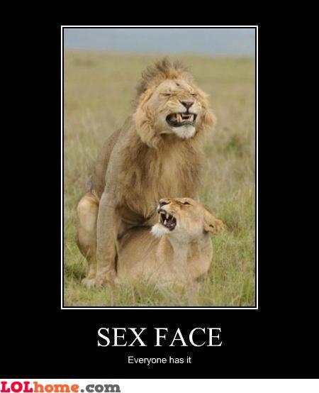 Wild fun sex