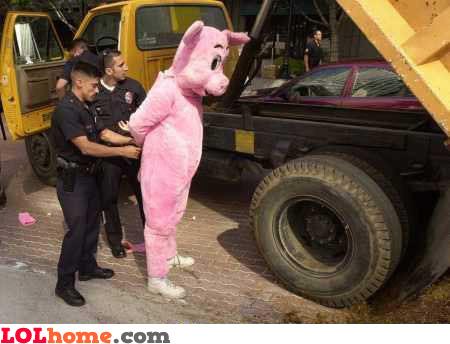 pink pig getting arrested