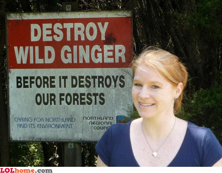 Destroy wild ginger