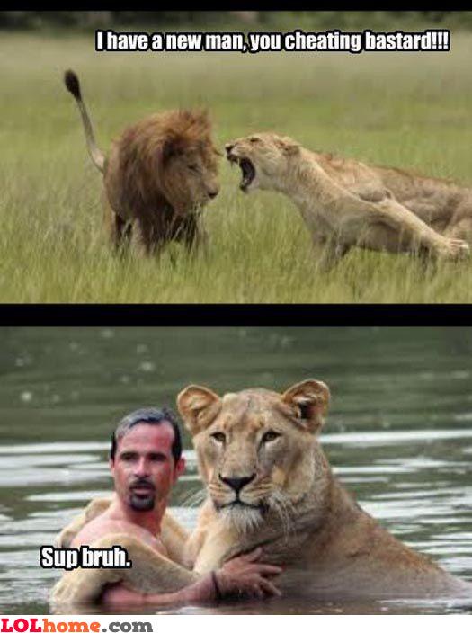 Lioness affair